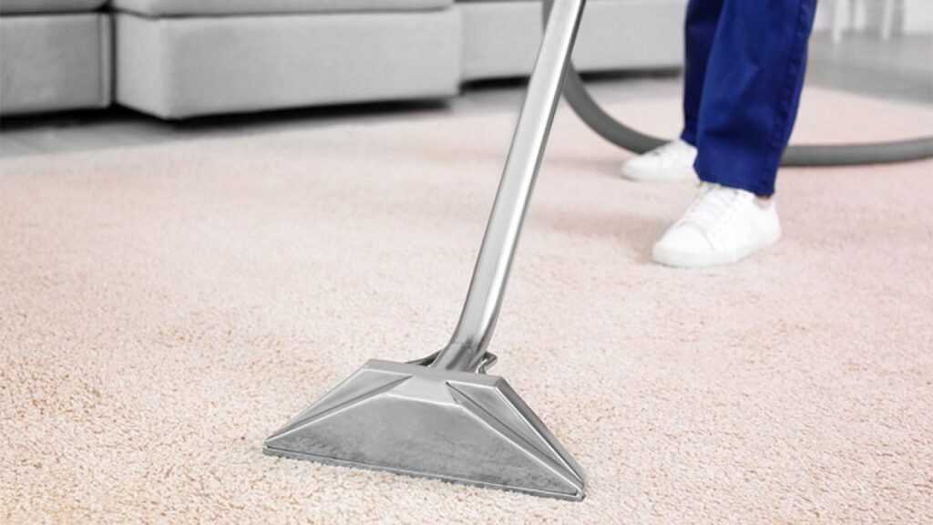 HOW TO KILL BUGS  FROM CARPETS WITH PROFESSIONAL CARPET CLEANING ?